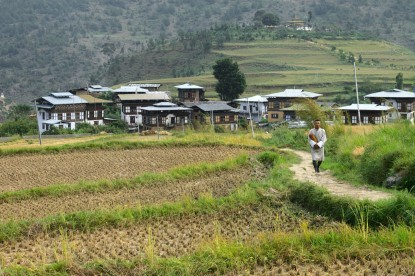 Way to Chimmy Lhakhang - Wangdue