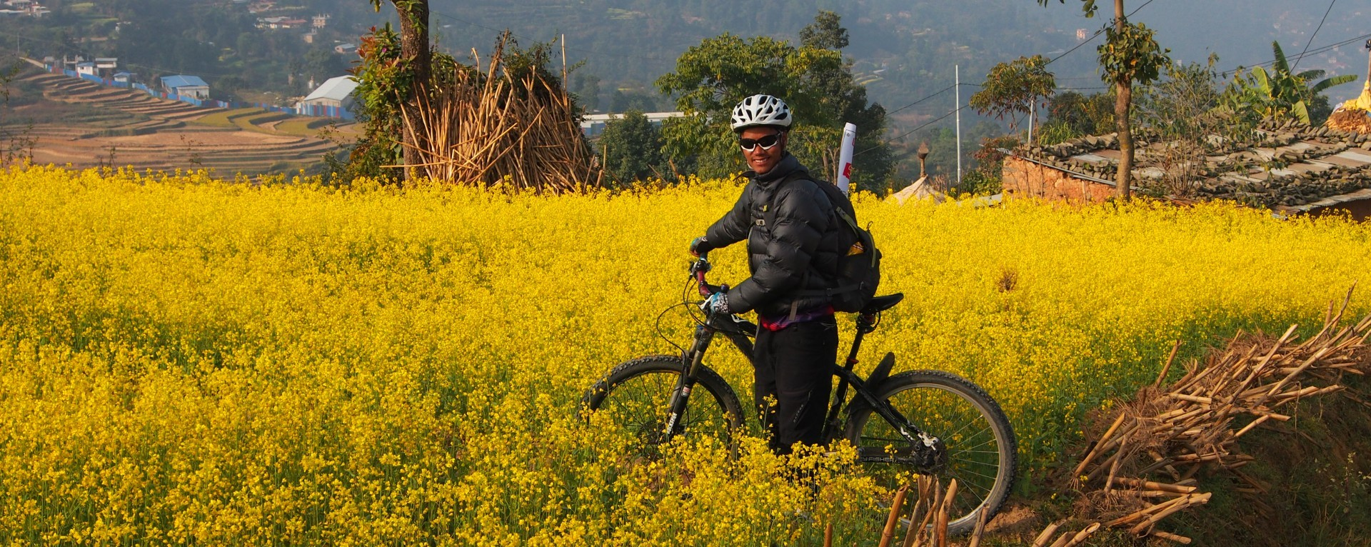 Cycling Track Mustard Field