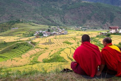Monks looking on Chimmy lhakhang - Wangdue