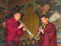 monks playing on dungs